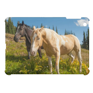 Curious horses foraging on grass iPad mini cover