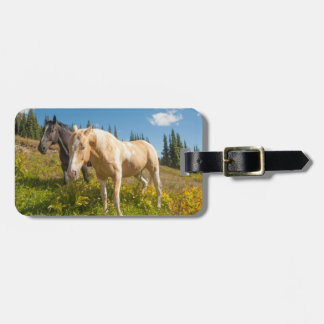 Curious horses foraging on grass tags for bags