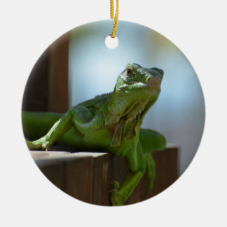 Curious Iguana Christmas Ornament