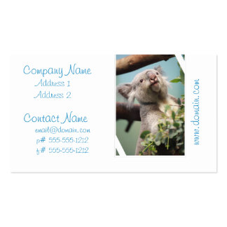 Curious Koala Bear Double-Sided Standard Business Cards (Pack Of 100)