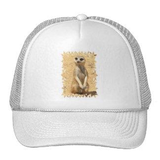 Curious Meerkat Baseball Cap Trucker Hat