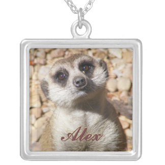 Curious Meerkat Necklace
