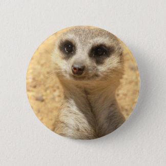 Curious Meerkat Round Pin