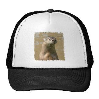 Curious Otter Baseball Cap