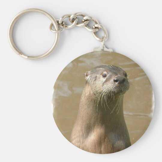 Curious Otter Keychain