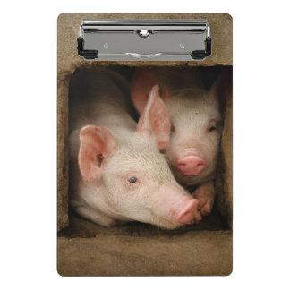 Curious Piglets Mini Clipboard