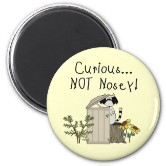 Curious Raccoon 6 Cm Round Magnet