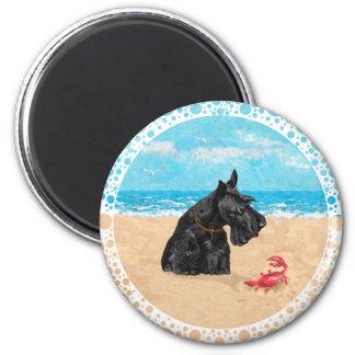 Curious Scottie at the Beach 6 Cm Round Magnet