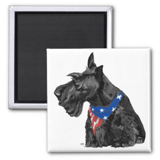 Curious Scottish Terrier Patriotic Square Magnet