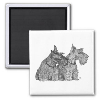 Curious Scottish Terriers Pen & Ink Sketch Square Magnet