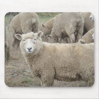 Curious Sheep Mouse Mat