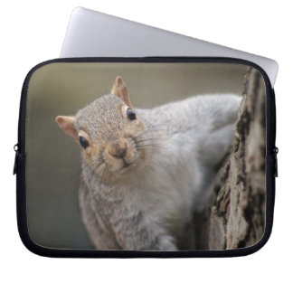 Curious Squirrel laptop sleeve