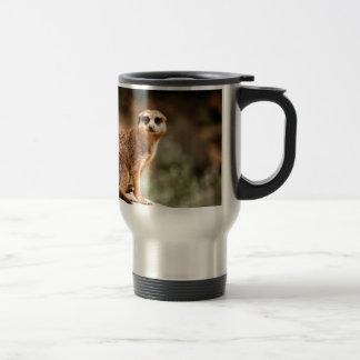 Curious Stainless Steel Travel Mug