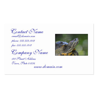 Curious Turtle Pack Of Standard Business Cards