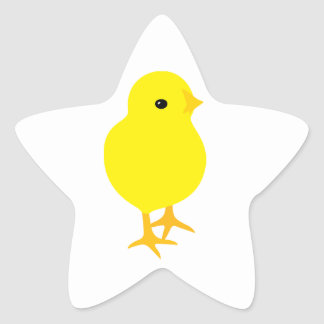 Curious Yellow Chick Star Sticker