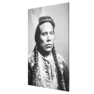 Curley, of the Crow tribe, one of Custer's scouts Canvas Print
