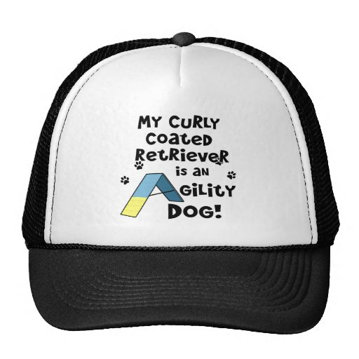 Curly Coated Retriever Agility Dog Mesh Hat