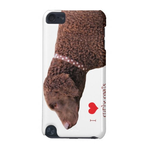 Curly-coated retriever dog ipod touch 4G case iPod Touch 5G Cover