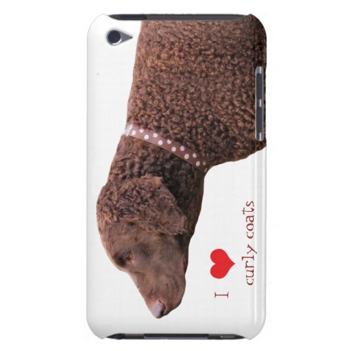 Curly-coated retriever dog ipod touch 4G case iPod Case-Mate Case