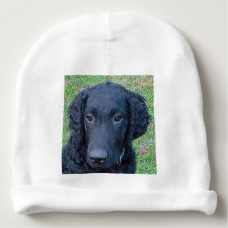 Curly_Coated_Retriever.png Baby Beanie