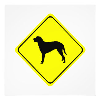 Curly Coated Retriever Silhouette Crossing Sign Photo Print