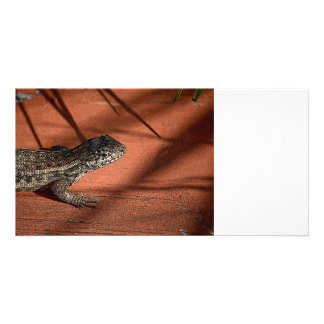 curly tail lizard florida reptile graphic photo card template