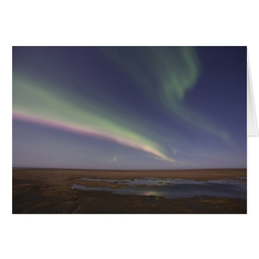 Curtains of colored northern lights greeting cards