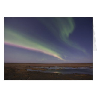 Curtains of colored northern lights greeting card