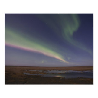 Curtains of colored northern lights poster