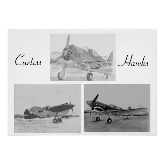 Curtiss Hawk family poster