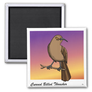 Curved Billed Thrasher rev.2.0 Buttons and Flair Square Magnet