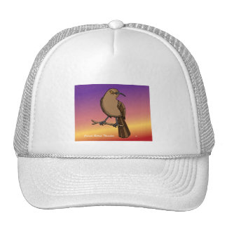 Curved Billed Thrasher rev.2.0 Shirts and tops Hats