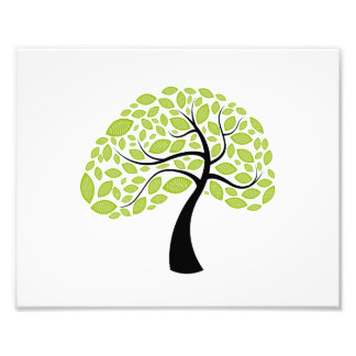curved trunk simple leaf green tree.png photographic print