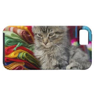 cusco peru iPhone 5 case