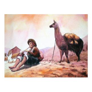 Cusco Peru Llama Picture Postcard