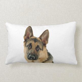 Cushion German shepherd