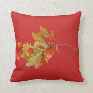 Cushion red bottom berries autumn oranges