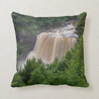 cushion with waterfall