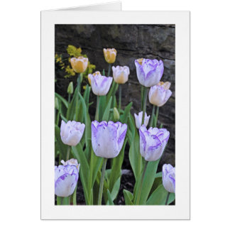 "CUST. GREETING CARD, ""PURPLE AND WHITE TULIPS"" CARD"