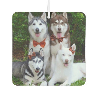 Custom Air Freshener - Your Pets