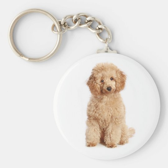 Custom Apricot Poodle Puppy Dog Key Chain