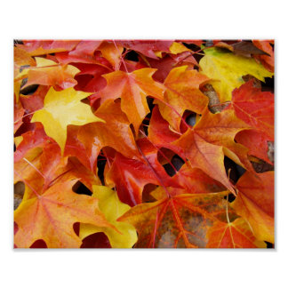 Custom Autumn Leaves art prints Fall Holidays Poster