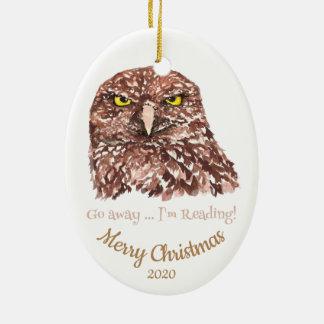 Custom Dated Christmas Go Away Reading Owl Fun Christmas Ornament