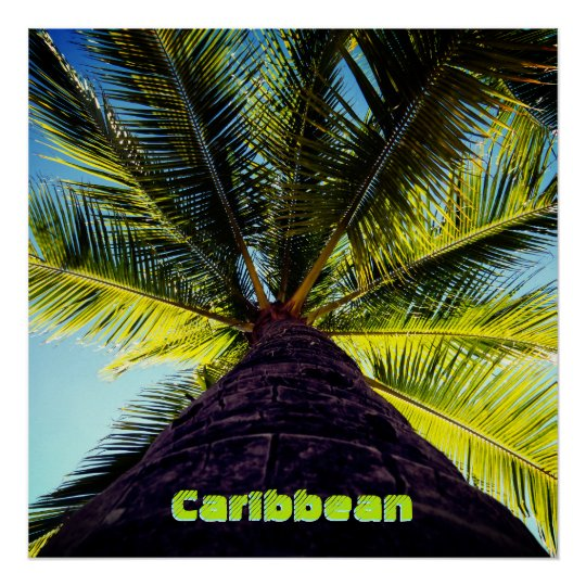 Custom Destination Tropical Palm Tree Poster