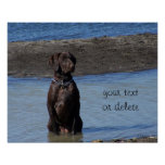 Custom Dog in the Lake Water- What's He Thinking!? Poster