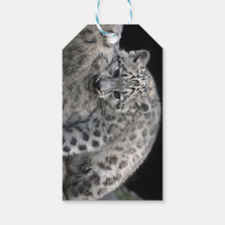 Custom Gift Tags with snow leopard kitten