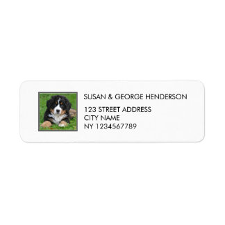 Custom kids pets photo family return address