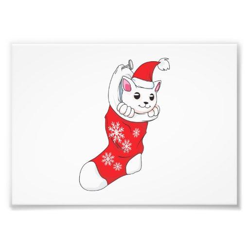 Custom Merry Christmas White Kitten Cat Red Sock Art Photo