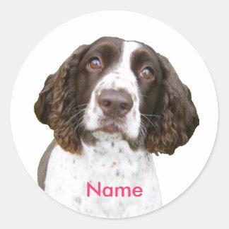 Custom Name English Springer Spaniel Stickers