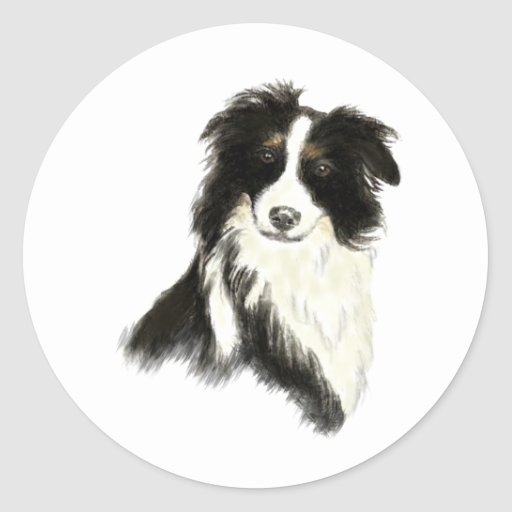 Custom Name text Border Collie Dog Pet Sticker